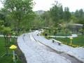 تجاوز و حمله اراذل در پارک طالقانی