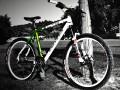 وبلاگ شیپور | دوچرخه های استثنایی از سراسر ایران! ~ لینک پد | سایت ...وبلاگ شیپور | دوچرخه های استثنایی از سراسر ایران!