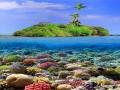 جزیره مرجان پاتایا-دیدنی های تایلند  - تور تایلند