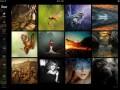 با آیپد از عکسهای ۵۰۰px ، لذت دوچندان ببرید